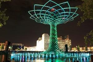 foto albero della vita